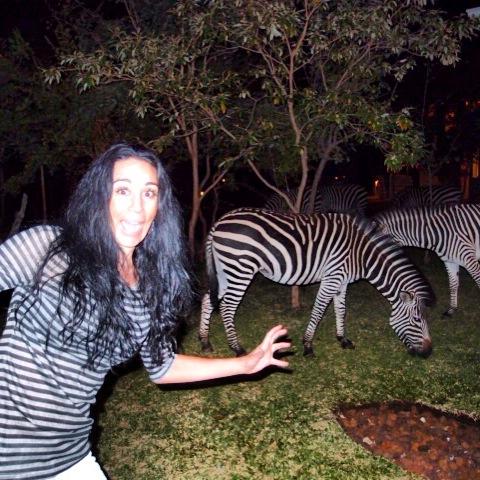 Zebra Photobomb